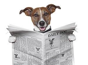 Diminuez drastiquement le temps de lecture des actualités financières :