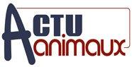 Donation du mois : Actuanimaux