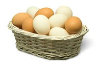 Utilisez-vous de travers la diversification ?
