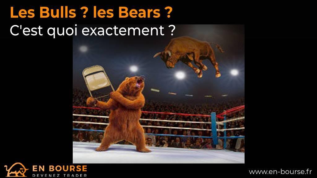 Ours et taureau sur un ring