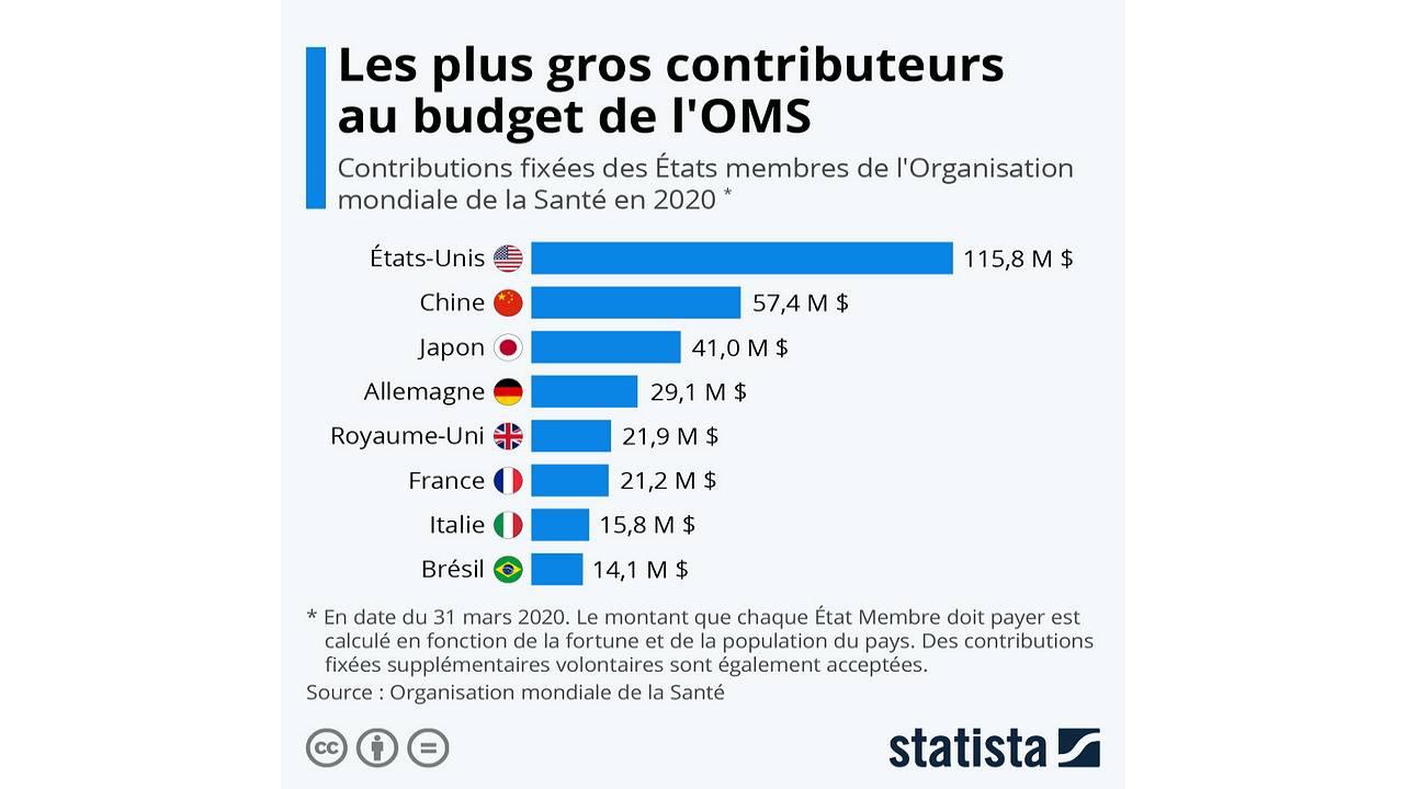 Graphique des contributions fixes des États auprès de l'OMS pour le budget 2020