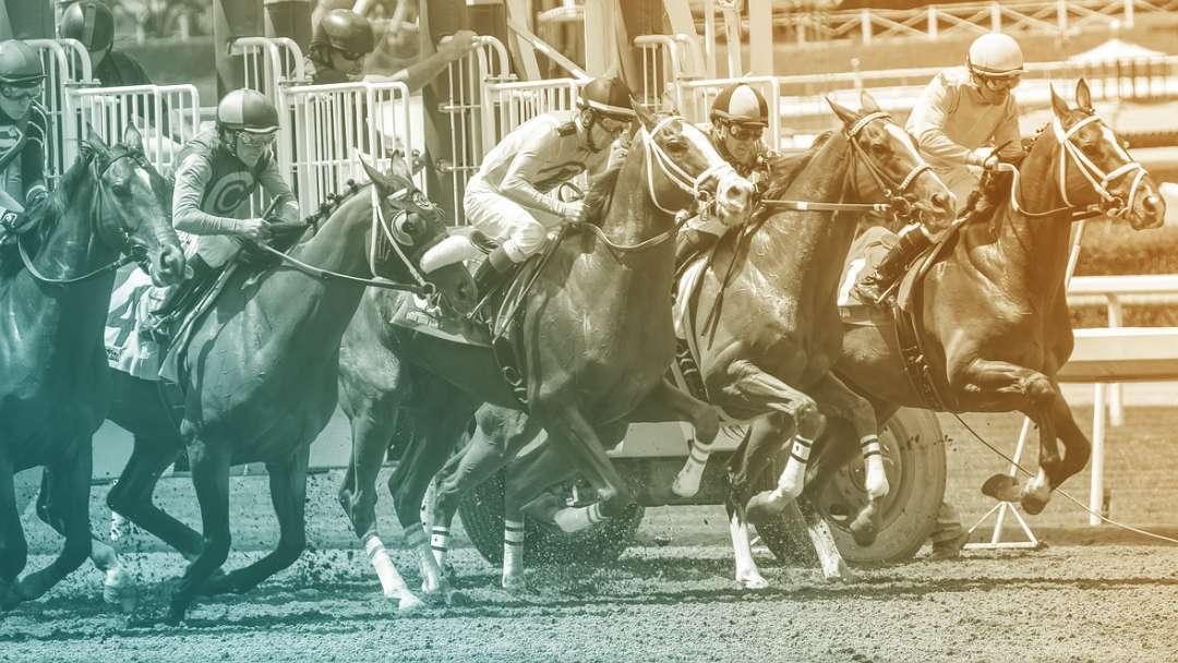 Départ d'une course de chevaux