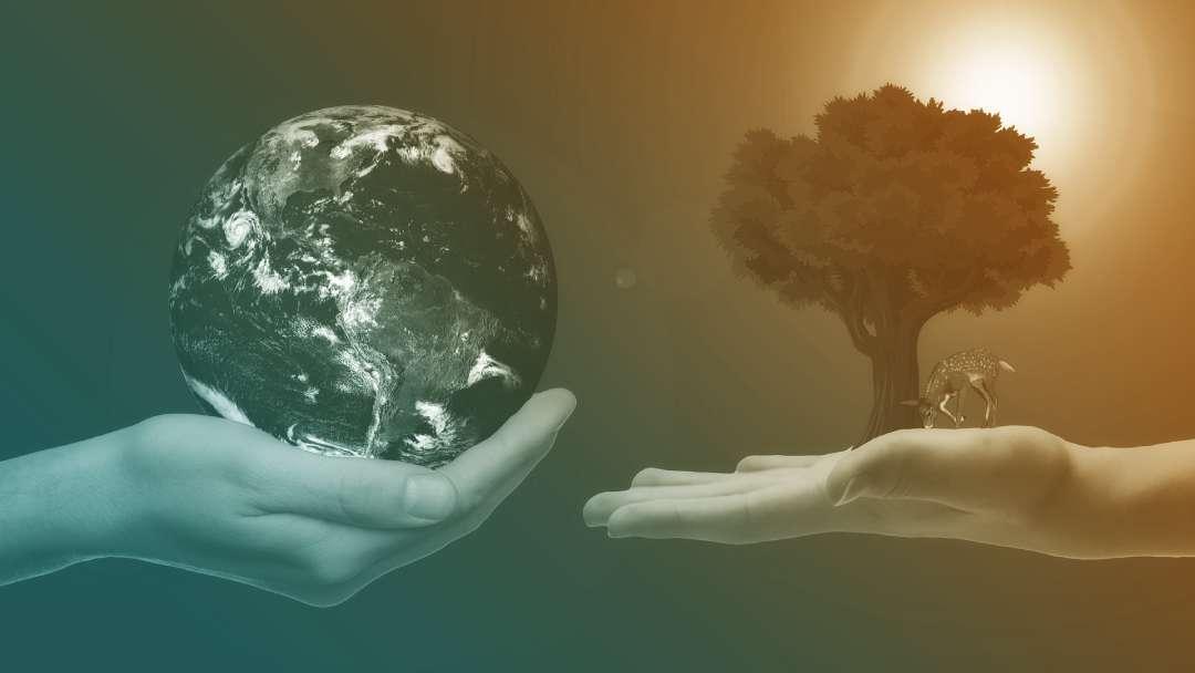 Main portant une planète terre face à une main portant un herbe et un cervidé