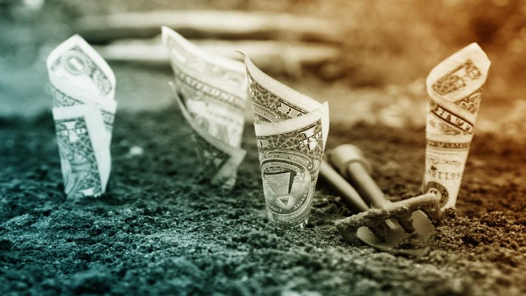 Billets plantés