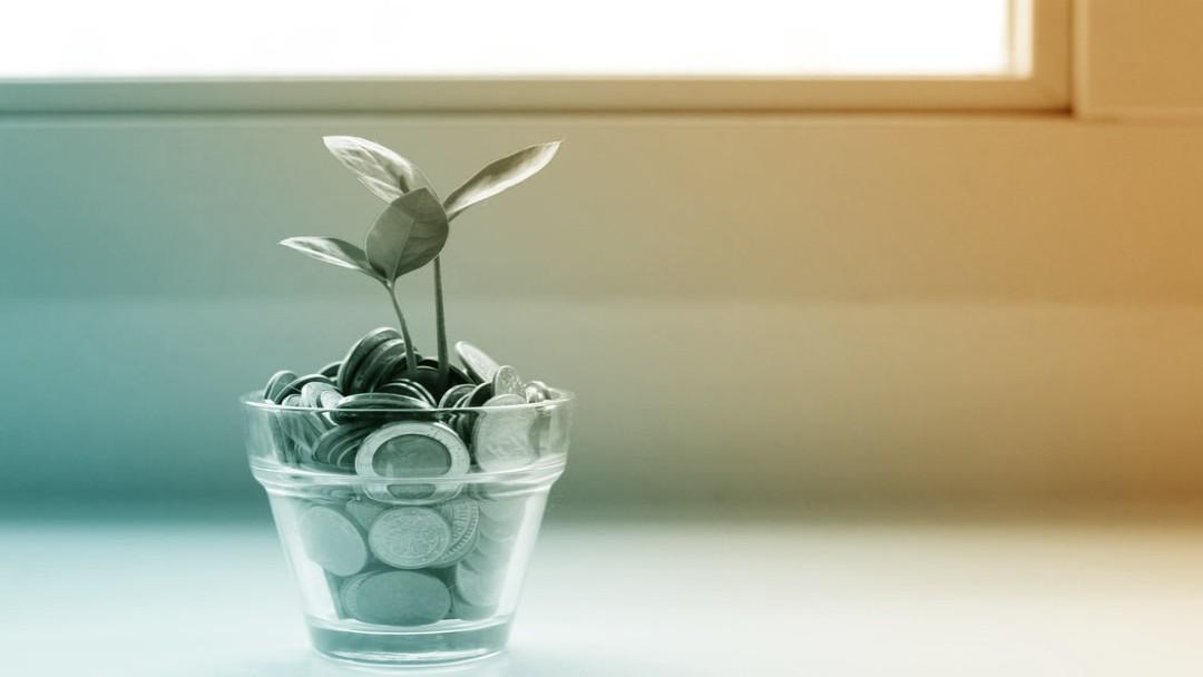 Petite plante poussant dans un verre rempli de pièces de monnaie