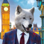 Photo du profil de Wolf
